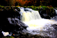Autumnal scene at Cenarth Falls